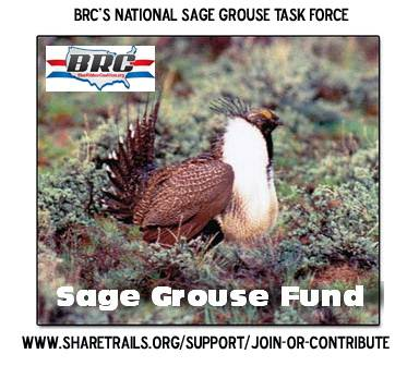 b2ap3_thumbnail_Sage-Grouse_fund.jpg